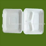 8x8x3 Sugar Cane Clamshell (Three Compartment)