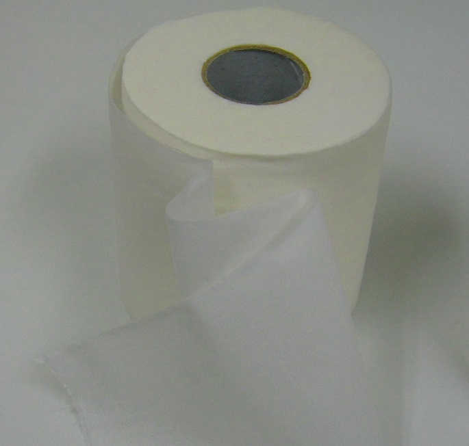 Sugarcane Bathroom Tissue